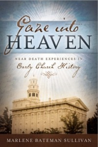 image of book cover for Gaze Into Heaven