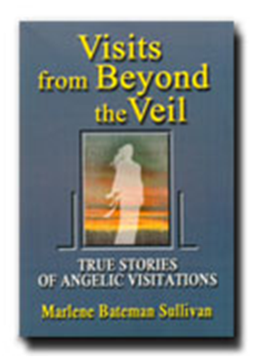 image of the cover for the book Visits from Beyond the Veil