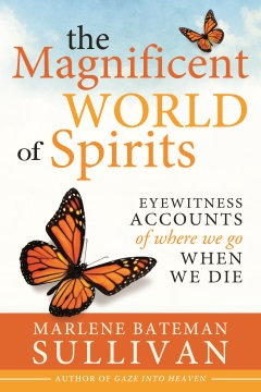 image of the cover for the book The Magnificent World of Spirits
