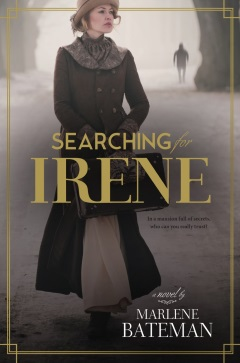 Image for the book Searching for Irene